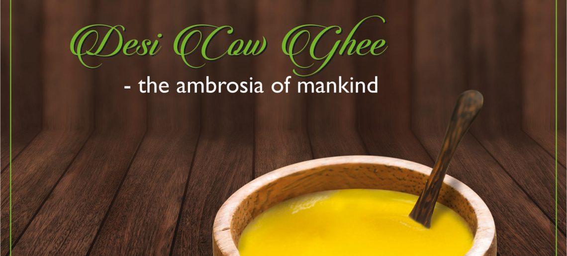 Desi cow ghee – the ambrosia of mankind