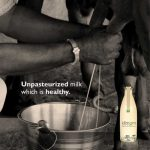Why is raw milk without pasteurization ideal for your family
